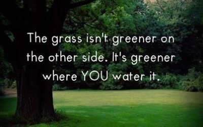 The grass is NOT greener on the other side